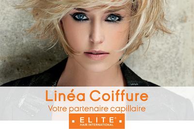 Linéa Coiffure : journée de la femme à la Foire expo de St-Brieuc