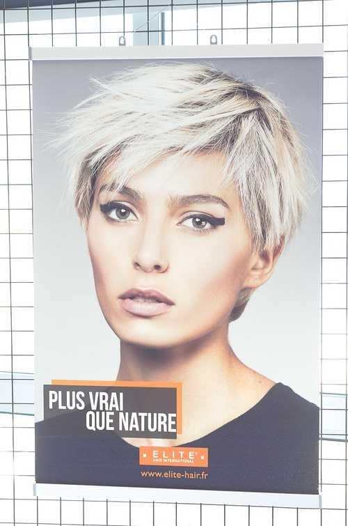 Linéa Coiffure à la Foire Expo de Saint-Brieuc dsc9154